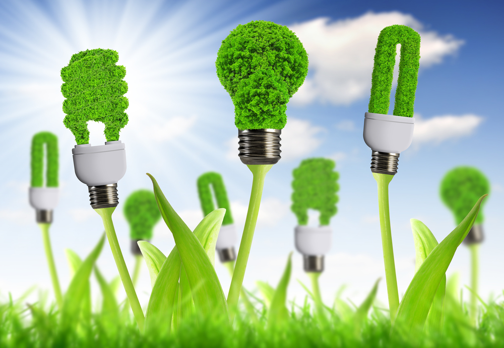 Time to consider green investing? 1