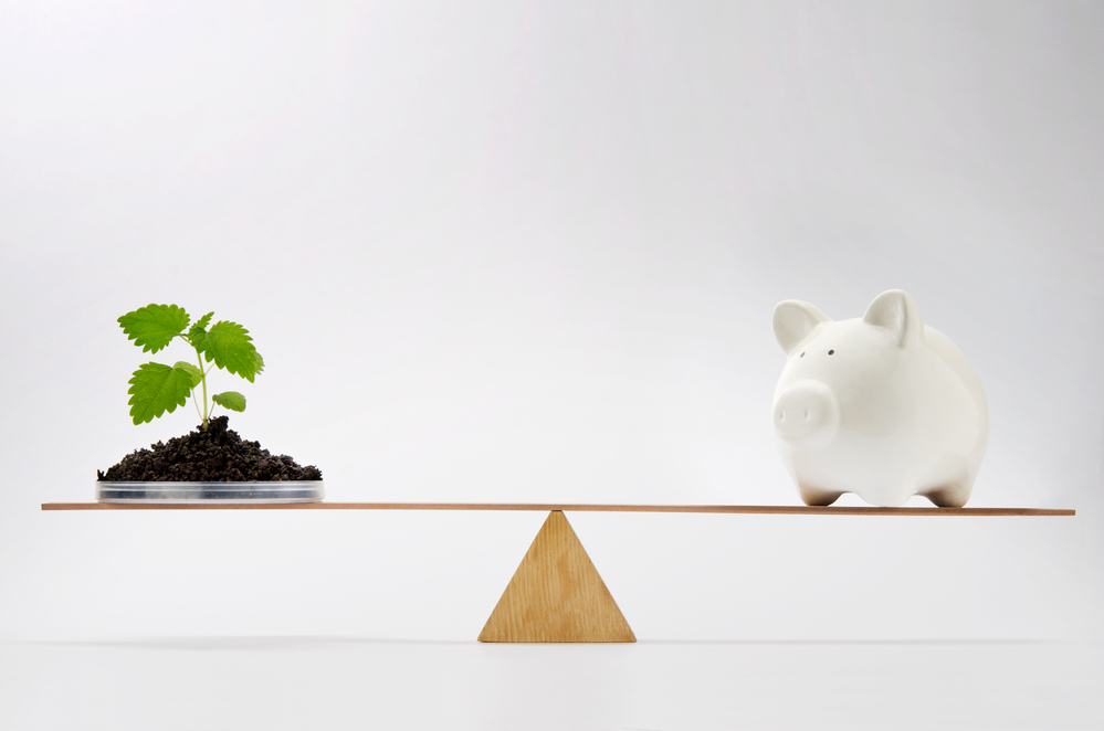 How sustainable investing can help you make more informed decisions 1