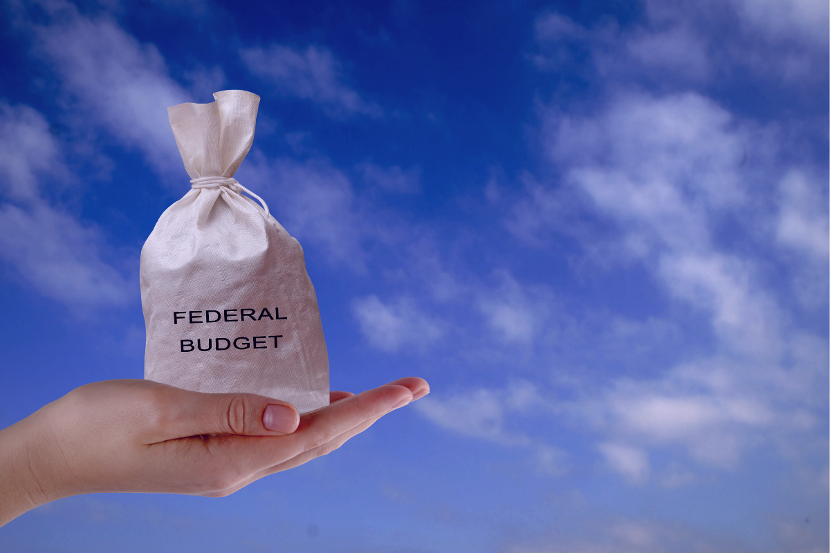 Federal Budget Overview 3