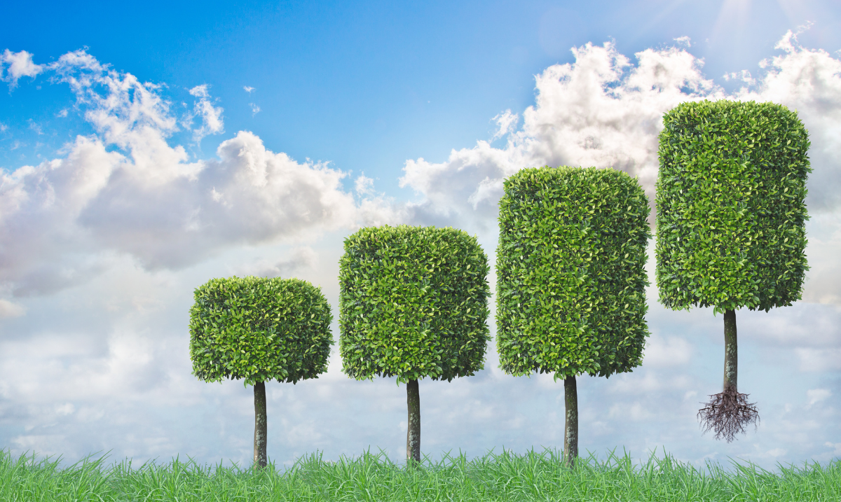 Investing sustainably without sacrificing returns 1